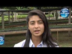 Honduras, Nación y Mundo: Pellets en Honduras