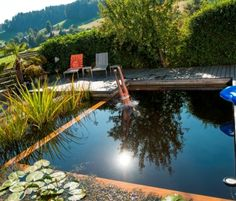 Schwimmteich gebaut in Modulholzbauweise