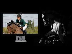 Equestre em foco com Stephan Barcha