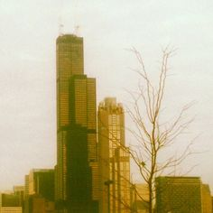 Forever the  Sears Tower to Chicago people...