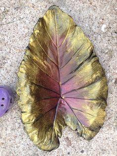 Elephant Ear. Concrete Leaf Casting. Used for bird bath.