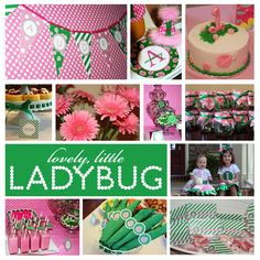 Ideas for a ladybug party