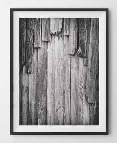 Rustic Wood Print Black and White Forest Woodland Wall Art