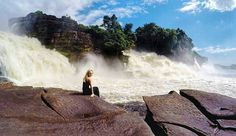 Canaima parque nacional 😁  #venezuela #amazing  #outdoor  #caribbean #gopro #vacation #vacaciones #roadtrip #viajes #travelgram  #travel  #traveling #turismo  #explore  #holiday #adventure  #путешествие  #отпуск  #венесуэла  #lifestyle #vsco #wanderlust  #outdoor #canaima #nationalpark  #saltoangel #angelfall  #waterfall  #wanderlust #selva #jungle #водопад #travel #tourism #travelgram #popular #trending #micefx [Visit www.micefx.com for more...]