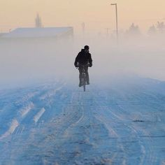 """@Edmontonian Journal's photo: """"A cyclist rides to work in the early morning fog at sunrise at the University of Alberta farm in Edmonton on Nov. 27, 2013. Photo by Ed Kaiser, Edmonton Journal #fog #weather #yeg #edmonton #alberta #canada #cyclist"""""""