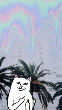 Ripndip iphone wallpaper #ripndip #middle #finger #cat #wallpaper #iphone #holographic