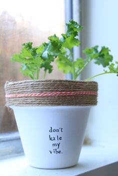 Herbs have practical value, serve a purpose, and with herb gardening you can actually use your plants. Container Gardening, Gardening Tips, Indoor Gardening, Gardening Services, Gardening Quotes, Organic Gardening, Horticulture, Garden Puns, Clay Pots