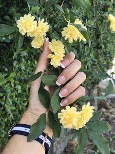 Wedding Rings, Moon, Engagement Rings, Nails, Jewelry, The Moon, Enagement Rings, Finger Nails, Jewlery