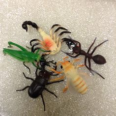 Giant insects. Fall in love with bees!