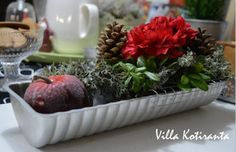 Jouluinen kukka-asetelma vanhaan kakkuvuokaan / Beautiful, Christmas flower arrangement, created into an old cake tin Christmas Table Settings, Christmas Home, Flower Arrangements, Flowers, Beautiful, Floral Arrangements, Royal Icing Flowers, Flower, Florals