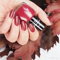 swatch Misslyn • go wild girls 855 • Beauty In Boots Collection fall 2016