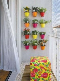 Love the plants and colorful pots.