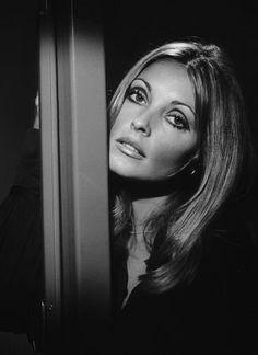 Sharon Tate (1943–1969) so gorgeous