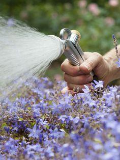 Handsproeiers blijven onmisbaar, al heeft u nog zo'n uitgebreid beregeningssysteem. Handig als u de sproeier goed kunt regelen, want de ene plant kan meer hebben dan de andere. Kies een metalen sproeier. Lekker degelijk. Wél naar binnen vóór de vorst! Alle handsproeiers hebben een universele messing klikkoppeling voor lekvrij sproeien. http://www.dewiltfang.nl/water-geven/handsproeiers/