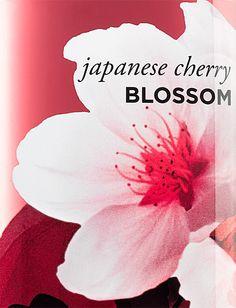 #JapaneseCherryBlossom #bathandbodyworks