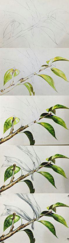 건국대 리빙디자인과 기출 소재 나뭇잎: