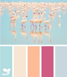 #Colour: Flamingo tones ~ design seeds