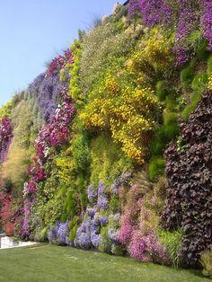 Blühende Mauer: Vertikaler Garten à Rossano // Bl - Terrasse Jardin Idees Vertical Planting, Vertical Garden Design, Vertical Gardens, Green Facade, Green Architecture, Rooftop Garden, Walled Garden, Dream Garden, Herb Garden