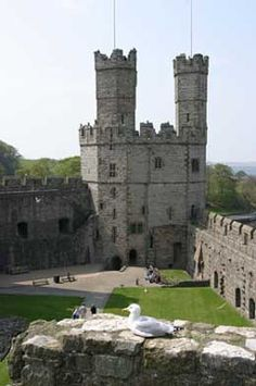 Wanna take a tour of all the castles in Wales, including this one:  Caernarvon Castle.
