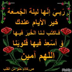Beautiful Flowers Pictures, Flower Pictures, Islamic Love Quotes, Arabic Quotes, Beautiful Morning Messages, Morning Qoutes, Medical Quotes, Oh Allah, Duaa Islam