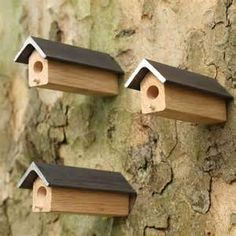 Solitary Bee House - Bing Images
