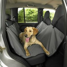 Dog Bed For The Back Seat Hammock Car Protector Pet