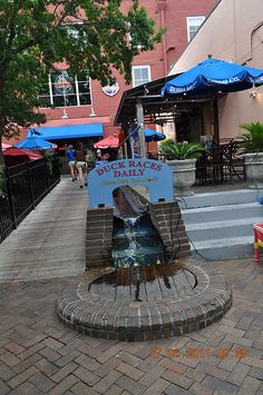 Bubba Gump Charleston SC  Duck Races Daily