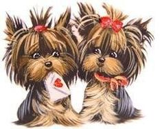 Everything About The Sprightly Yorkshire Terrier Pup Exercise Needs Yorky Terrier, Yorshire Terrier, Yorkies, Yorkie Puppy, Yorkshire Terrier Haircut, Yorkshire Terrier Puppies, Cute Puppies, Cute Dogs, Dogs And Puppies