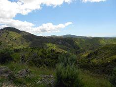 Flat Point New Zealand [OC] (960x720)