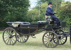 Landau - a larger open carriage pulled by either 2 or 4 horses.  It had two folding tops, one at the front and one at the back