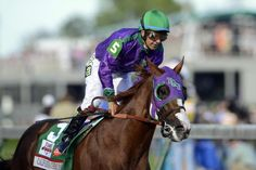 California Chrome (shown here winning the 2014 Preakness at Pimlico)