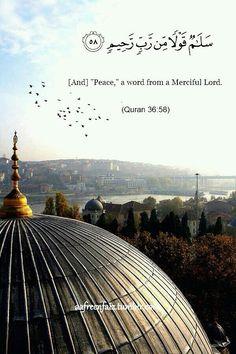 سلام من أرض السلام