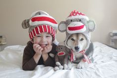 Maru in Michigan Baby Dogs, Pet Dogs, Dog Cat, Animals For Kids, Animals And Pets, Cute Animals, Dog Nose, Mundo Animal, Shiba Inu