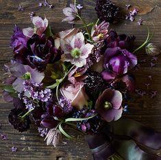 Botanical Brouhaha - A Flower Blog Featuring the Best   Floral Design   Florists   Wedding Flowers