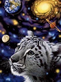 Soul of the Universe ~by Schimmel
