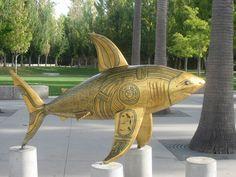 Egyptian shark