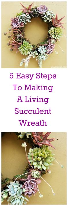 Succulent wreaths are living works of art - a video guides you through.
