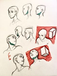 """sabertoothwalrus: """"a study on drawing heads at different angles :V """" hey look I decided to add photos in case that'd be more helpful there are two distinct borders of this shape: the jawline, which is..."""