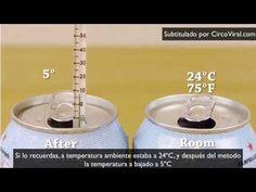 Cómo enfriar una lata en dos minutos. colocar agua en un bowl, hielo y sal.