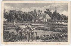 """Rosen- und Gartenbauausstellung, Forst Lausitz, 1913, mit Musterhaus """"Eigene Scholle"""""""