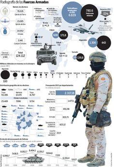 GRÁFICO: Radiografía de las Fuerzas Armadas