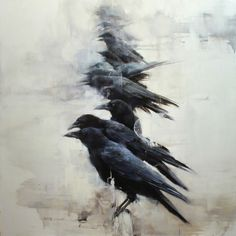 """""""One for sorrow, Two for joy, Three for a girl and Four for a boy..."""""""