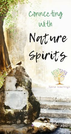 How to invite in and create a relationship to nature spirits such as faeries and elementals | rainateachings #elementals #faeries #magick #consciousco-creation
