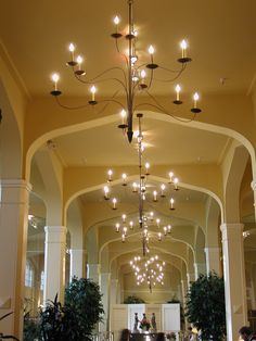 "Studio Steel's ""Fleur"" chandelier - comes in many many sizes and configurations Candle Chandelier, Chandeliers, Wedding Vows, Traditional House, Glass Pendants, Wrought Iron, Lanterns, Sconces, Ceiling Lights"