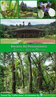 """Our Travel Tip for the """"Coffee Zone"""" of Colombia: visit the """"Recinto del Pensamiento"""" in Manizales! It's an easy half day excursion with amazing, relaxing, and educative experiences. You see butterflies, birds, bonsai, orchids, and sustainable bamboo architecture on an internationally recognised scale. See our blog post and gallery for more information!"""