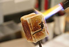 Introducing the Cronut creator's newest sensation: frozen s'mores