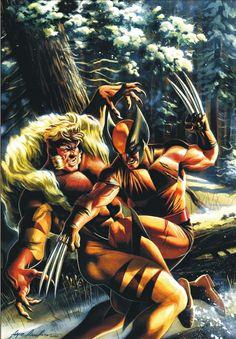 Wolverine vs Sabretooth by Felipe Massafera