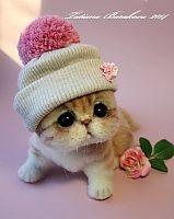 Cuddly !!
