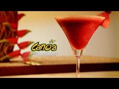 HOW TO MAKE COCKTAILS WITH CANOA FRUIT PUREE - YouTube Fruit Puree, Frozen Fruit, Cocktail Making, Martini, Blackberry, Cocktails, Tableware, Youtube, Craft Cocktails
