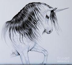 Unicorn Mythology Drawing